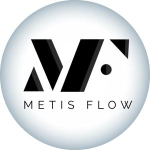 合同会社MetisFlow