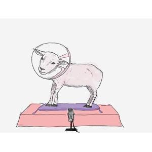 羊のピンク