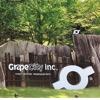 グレープシティ株式会社