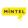 株式会社Mintel Japan