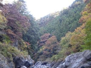 masarumasu