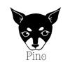 株式会社Pino