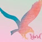 合同会社Libird