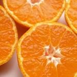 オレンジ漫画