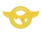 sakai_hayabusa