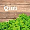 Qum93
