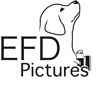 EFD-Pictures