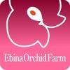 株式会社Ebina Farm