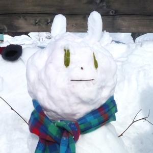 snowwwn