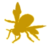 Bee Innovator.Inc