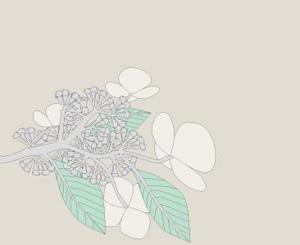 mina_mina(みなdesign)